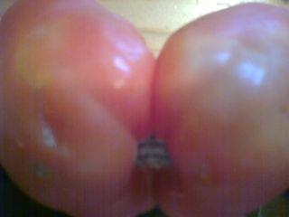 Bi-Tomate
